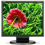 Desktop Monitor - Multisync E171m - 17in - 1280x1024 (sxga) - Black